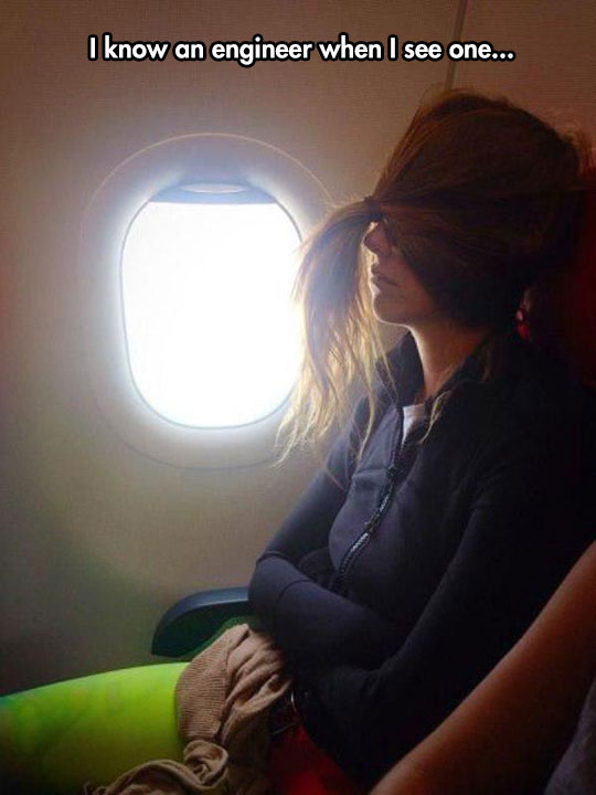 funny-woman-ponytail-covering-eyes-plane
