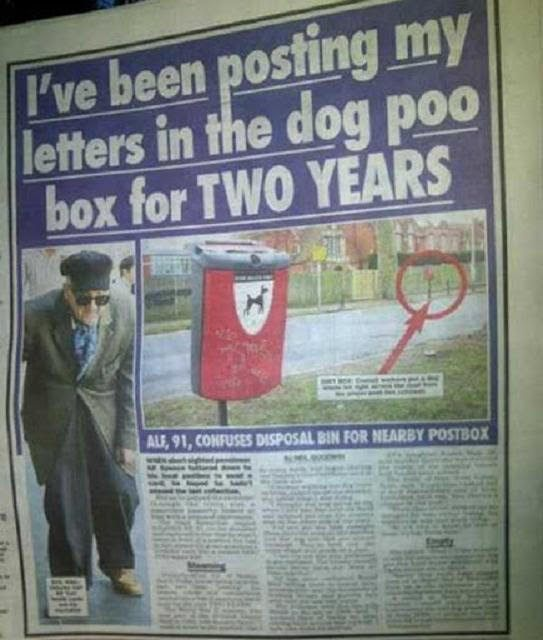 dog-poo-box