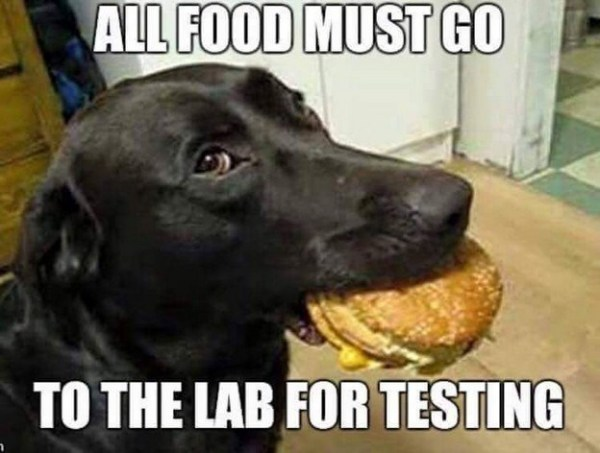 Lab-Test_small
