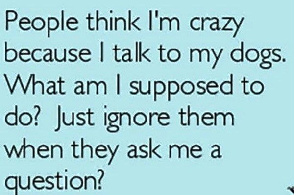 People-think-Im-crazy..._small