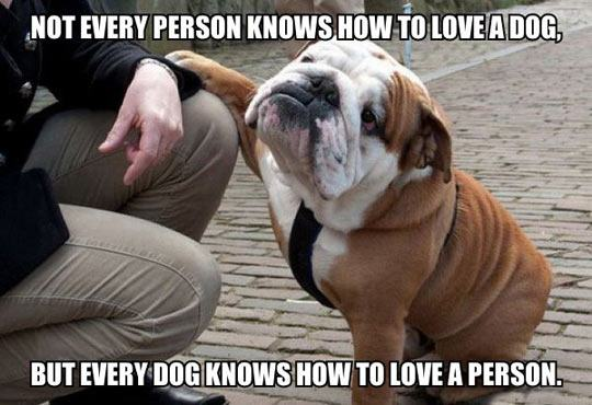 dog_owners_11