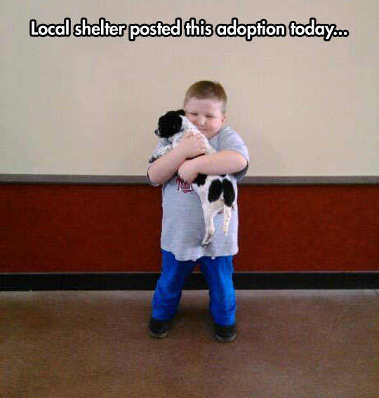 cool-fat-kid-adoption-shelter