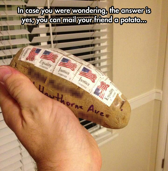 cool-mail-potato-postal-service