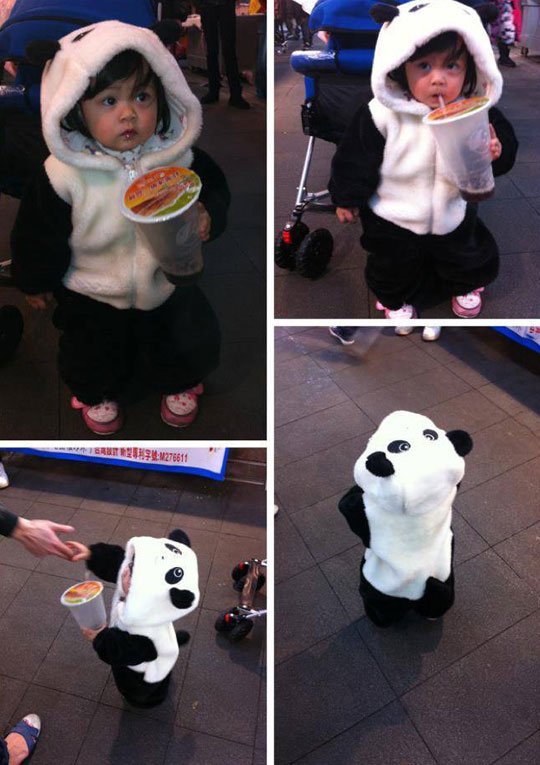 cool-Panda-toddler-costume