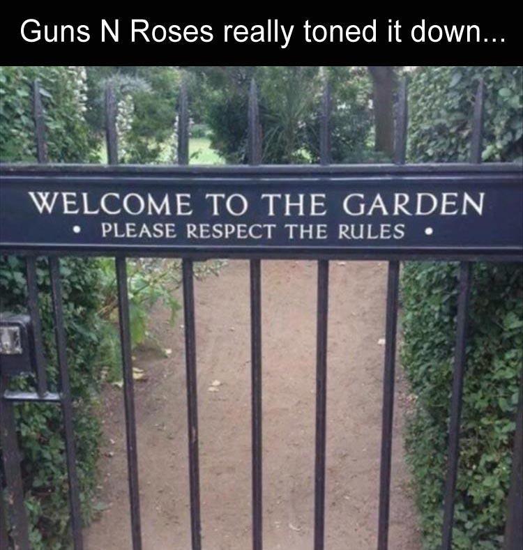 funny-guns-n-roses