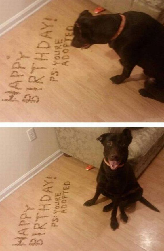 31-funny-pictures-1411