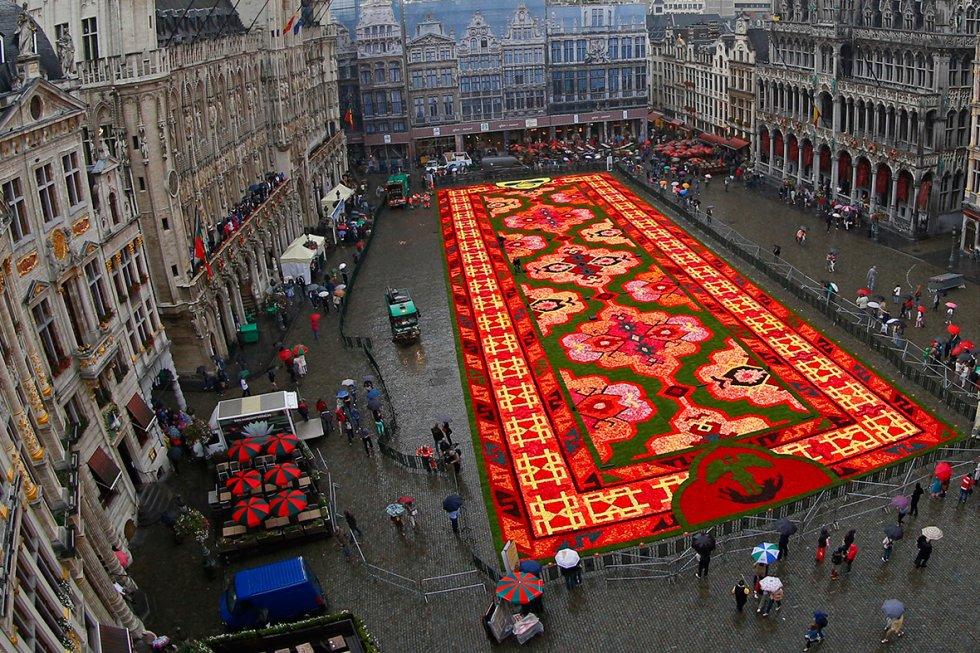 brussels-grand-place-flower-carpet-2014